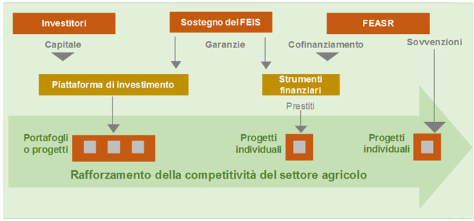 Una leva per gli investimenti a supporto delle politiche di sviluppo rurale: integrazione tra FEISR e FEASR