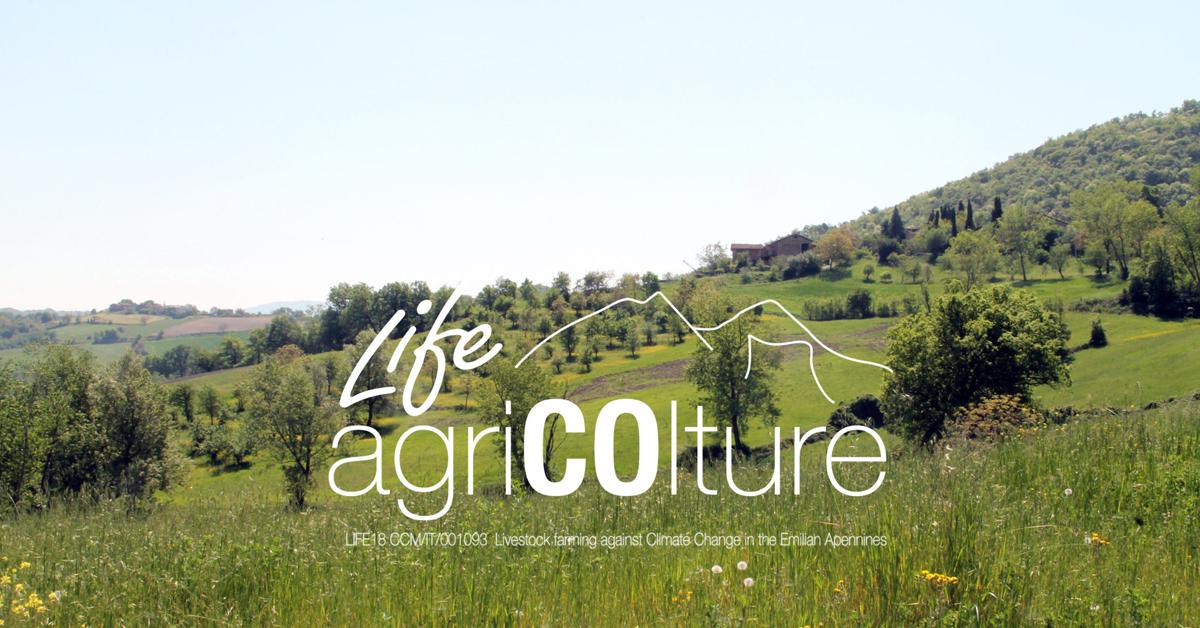 Logo progetto Life