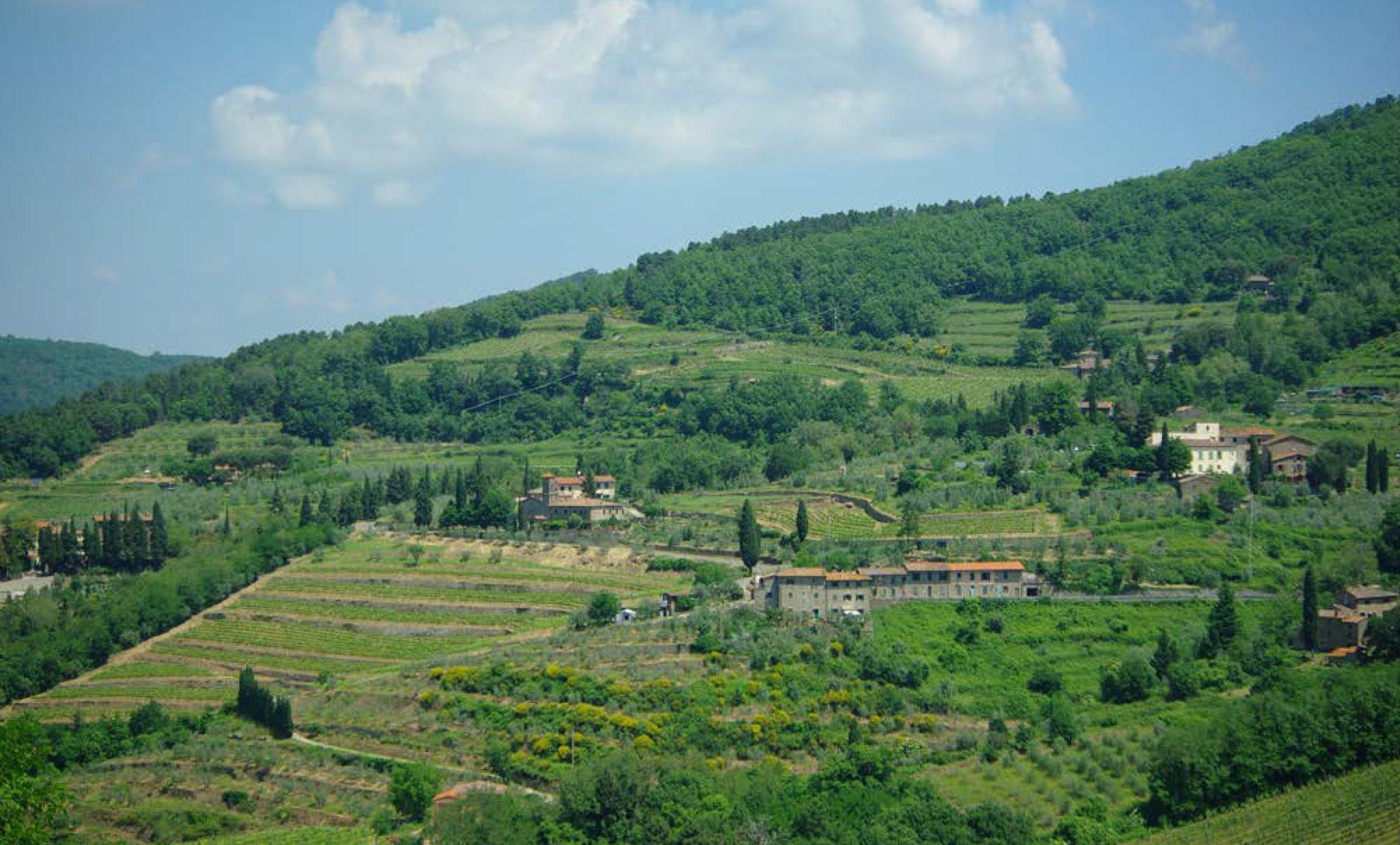 Lamole-Greve in Chianti