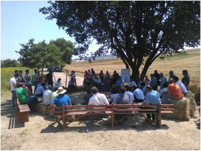 """Focus group in campo """"Azioni collettive per la conservazione del suolo"""" in Molise"""