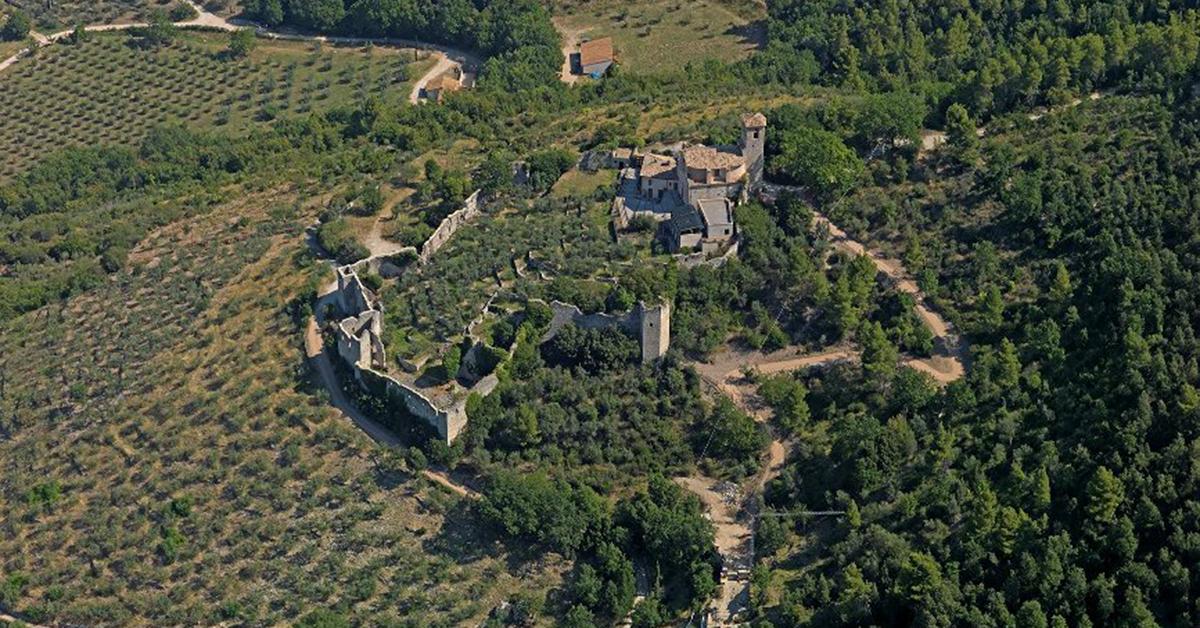Fascia pedemontana olivata fra Assisi e Spoleto